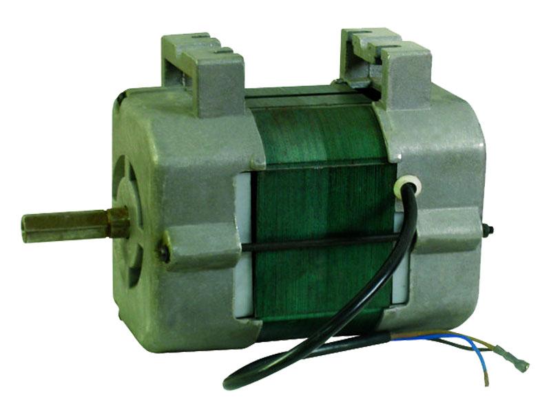 31-695 AC Motor
