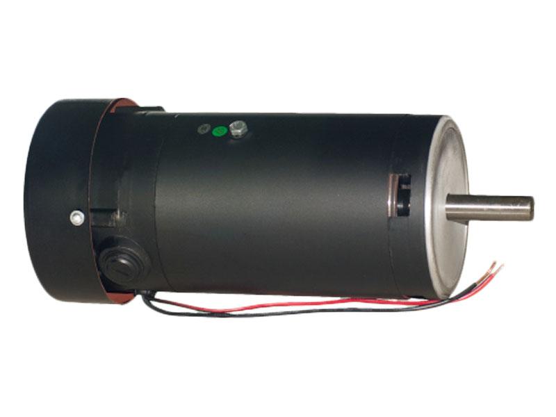 ZYT801516/ZYT110/1516 DC Motor